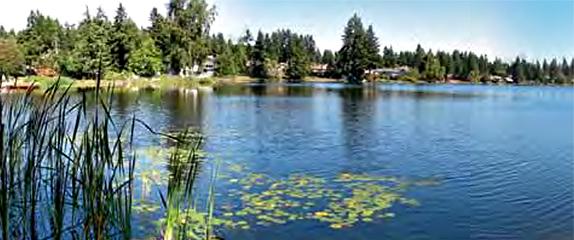 pattison lake