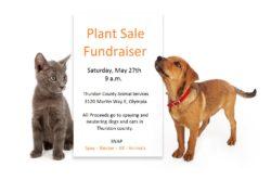 SNAP Plant Sale Fundraiser