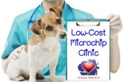 Microchip Clinic Wednesday, May 29th!