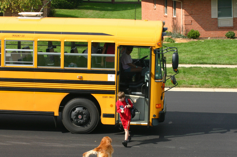 A dog meets a boy after school